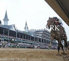 MINE THAT BIRD 2009 Kentucky Derby Winner Horse Racing 8 x 10 Photo