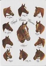 DVD 11 HORSERACING TRIPLE CROWN WINNERS RACES 1919 - 1978 + SECRETARIAT MAIDEN