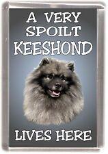 "Keeshond Dog Fridge Magnet ""A VERY SPOILT KEESHOND LIVES HERE"""
