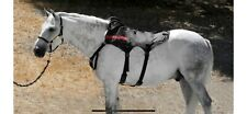 Game Ready Equine back attachment - used in great condition split hose included