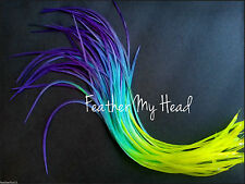 "Feather Hair Extensions Multi Rainbow Color Medium Length 7""-9"" Long Snow Cone"