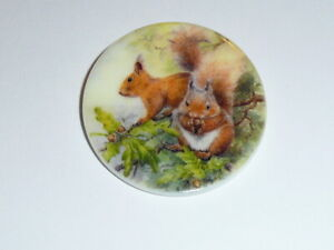"""Squirrels In Tree Button - Mother of Pearl MOP Shank Button 1+3/8"""" Squirrels"""