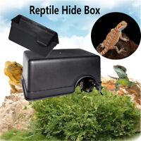Cachette d'insecte noire de boîte d'élevag de cage de reptile d'animal familier