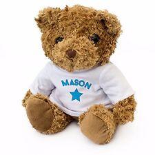 NEW - MASON - Teddy Bear - Cute Soft Cuddly - Gift Present Birthday Xmas