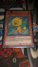 Dandylion - LCGX-EN042 - Secret Rare - 1st Edition - LP Yugioh