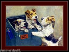English Picture Print Wire Haired Fox Terrier Dog Art
