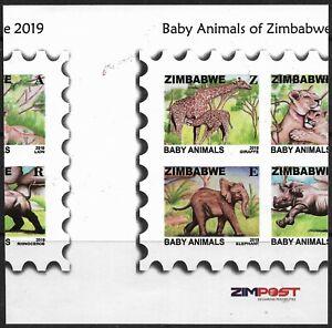 Zimbabwe 2019 Baby Animals Perforation Shifted on Sheetlet Superb MNH