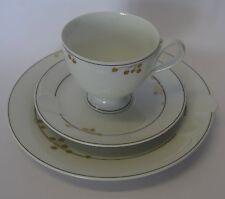komplettes Kaffeegedeck  Hutschenreuther Fleuron Chloe Dec. St. Honore