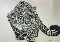 PRINT of original ink & pencil art leopard big cat contemporary realism modern