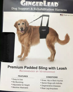 GingerLead Large Female Dog Support & Rehabilitation Harness NEW