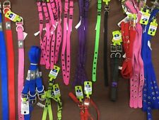 Dog collar, Top paw buckle collar many Sizes ,Material & Colors, New with tags