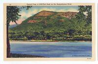 Council Cup Mountain Susquehanna River PA Vintage Pennsylvania Postcard