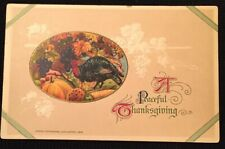 Vintage Postcard John Winsch Thanksgiving Turkey Embossed Germany Unused