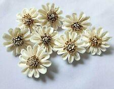Daisy Flowers Sola Balsa Wood Craft Decor Bouquet Home Spa Fragrance Party Bride