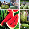 HK- KQ_ 50Pcs Giant Watermelon Seeds Sweet Taste Fruit Bonsai Yard Garden Decor