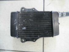 b1. Honda NES 125 JF07 cooler radiator cooler radiator