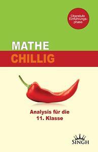 Mathe Chillig - Analysis für die 11 Klasse - Oberstufe Gymnasium Nachschlagewerk