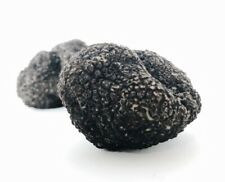 Foods In Season Italian Black Truffles W/ Rice Container 1oz (28.3g)Sealed