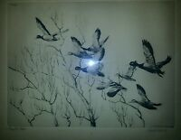 Richard E. Bishop (1887-1975) Through The Willows 1936 Mallard's, Signed Etching