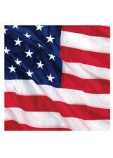USA BANDIERA AMERICANA FESTA TOVAGLIOLI pk16