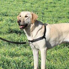 Premier Easy Walk No-Pull Training Dog Harness SM Black
