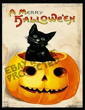 Primitive Halloween Black Cat Pumpkin  Print   PT5     8x10