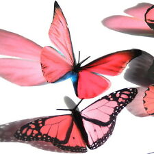 100 Pack Butterflies - Blush Pink - 5 to 6 cm - Topper, Weddings, Crafts, Card