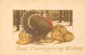 BEST THANKSGIVING WISHES Turkey & Pumpkins 1910 Hand-Colored Greetings Postcard