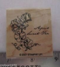 Stampin Up Single Stamp Flower of the Monthm April Sweet Pea Flower Birthday