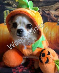 🎃 Pet Dog/Cat Halloween Pumpkin Costume In XSmall/Small/Medium £🎃12,99