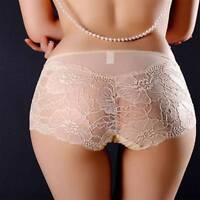 Women High Waist Underwear Sexy Full Transparent Lace Seamless Plus Size Briefs