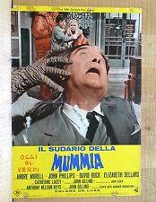 IL SUDARIO DELLA MUMMIA fotobusta poster The Mummy's Shroud André Morell U30