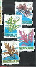Algae-seaweeds Transkei 1988