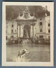 Austria, Salzburg, Kapitelschwemme Horse Well , Baroque Fountain Salzburg Vintag