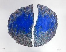 """RENZO NUCARA, Serigrafia su PVC neutro, tratta da """"Ama la natura"""""""