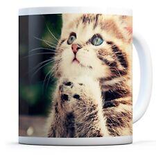 Cute Adorable Kitten - Drinks Mug Cup Kitchen Birthday Office Fun Gift #8953