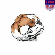 American Bulldog Dog 4 pack 4x4 Inch Sticker Decal