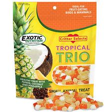 Tropical Trio (4.5 oz.) - Healthy Fruit Treat - Sugar Glider, Marmoset, Squirrel