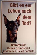 Leben nach dem Tod ? Hund Blechschild Metallschild Schild Tin Sign 20 x 30 cm