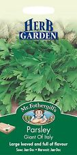 Mr Fothergills -  Herb - Parsley - Giant of Italy - 750 Seed