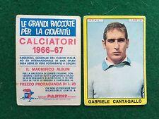 CALCIATORI 1966/67 66/1967 SPAL CANTAGALLO Figurina Sticker Panini (NEW)