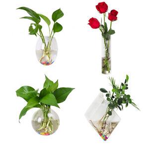 Hanging Glass Terrarium Plant Air Planter Flower Vase Pot Clear Round Oval Shape