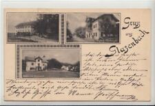74560/50- Gruss aus Elsbethen Glasenbach im Bezirk Salzburg-Umgebung um 1905
