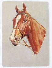 SWAP CARD. BEAUTIFUL HORSE PORTRAIT. FAITHFUL FRIENDS COLLECTION c2006. WIDE