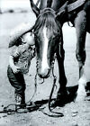 Avanti Little Cowgirl Kissing Horse America Collection Birthday Card photo