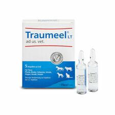 HEEL Traumeel ad us vet 5ml (VET) German Version 5 amp