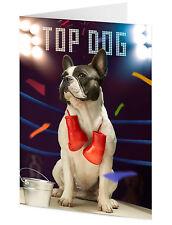 TOP DOG BULLDOG FRANCESE in BOXE RING -- compleanno della madre o padre's Giorno Scheda