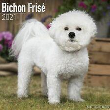 Bichon Frise Calendar 2021 Premium Dog Breed Calendars