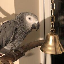 3 x MASSIVE Parrot Bells Strong Metal Bird Toy Interactive Cockatiel Parakeet