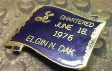 Lions Club Lady Lioness Elgin North Dakota Chartered June 18, 1976  pin badge